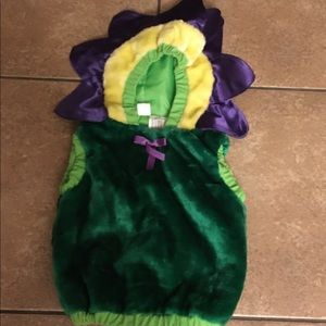 Other - Baby Halloween Costume.. Flower